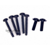 Set of replacement screws for Sinclair ZX Spectrum +3